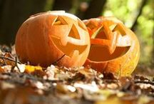 Halloween Tricks and Treats / Get into the Halloween spirit with these BOO-riffic tricks and treats!