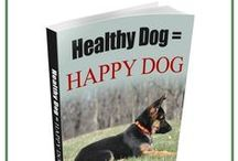 GSD Health & Care / Take care of your German Shepherd's health! We have some tips & tricks below and in our special section on our website (https://www.shepped.com/category/health/)