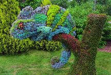 The Art of Topiary and Plant Sculpture