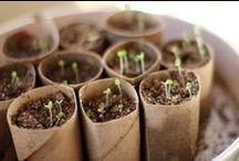 Astuces écologiques / Clayrton's a développé un label fleuriste éco responsable portant une ambition collective. Il a été élaboré à partir d'échanges avec Fédération Nationale des Fleuristes de France et de rencontres avec des groupes de fleuristes. Ensemble, nous souhaitons faire reconnaître les démarches éco responsables entreprises, inviter l'ensemble de la profession à s'engager et œuvrer pour un retour aux sources du métier de fleuriste.