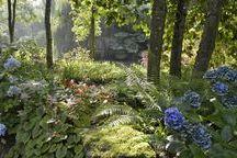 Schattengarten