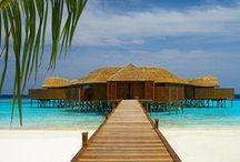 maldives ♥