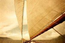 sail / yachts, sailing, tropical islands and warm waters