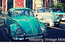 Auto Vintage / Raccolta auto VINTAGE