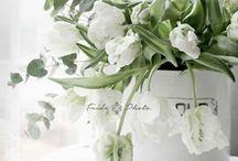 *Flower inspiration*