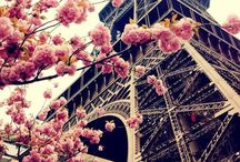 I love Paris / Places to go, things to see, restaurants to try