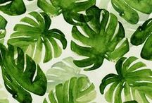 Ilustrations / Beautiful hand made paint. #watercolors #botanicalart #flowers #cactus #art