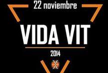 VIDA VIT 2014