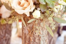 Wedding ideas / by Natasha Bavin