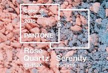 Pantone Color of the Year / Discover shades in the FLOWER Beauty lineup inspired by 2016 Pantone Color of the Year, Rose Quartz and Serenity.