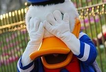Mrs Donald Duck