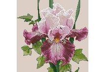IRIS CROSS STITCH / FLOWERS