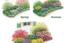 Landscaping Ideas - For All Seasons / Landscaping ideas all areas of your yard