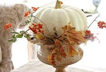 Awesome Autumn / by Susan Bragg