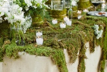 Tablescapes / by Cynthia Christensen