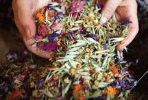Healing with herbs!!