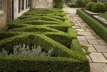 Parterre & Pattern Gardens - Gracious Living www.DanielleDRollins.com