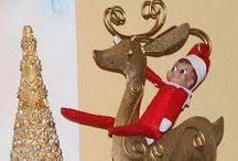 Elf on the Shelf / by Tammy Naivar