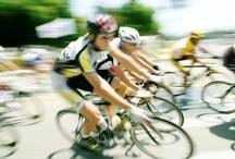 Cycle North Georgia & Six Gap Bike Ride