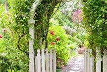 garden ideas / by Terry