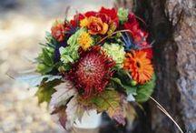 Fall Weddings / Boulder Blooms wedding floral designs for fall weddings.