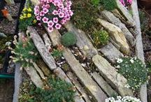 GARDEN - ROCK (alpinum)