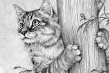 TEGNING - NATUR og DYR / Natur og dyre tegninger for fargelegging