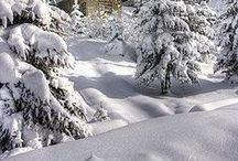 ❄〰 Snow, Ice  & Frost ~  Neige & Glace / by ´⋱‿✿Ꭺlyssα (Élise-Ann) Ꮛ