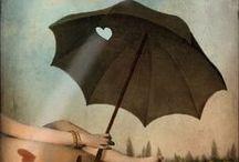 Parapluies mis en scène - Umbrellas