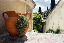 Gardens & Terrace