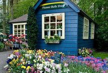 Potting shed / Garden shed / Potting Benchs /   If anyone  is looking for me I'll be in the garden shed . / by Wendy