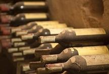 Wine  / Wines. Wine culture, Vinyards, Wine Cellars, Wine Regions, Wine pairings.