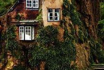 Home in Wood / Homes, houses, Casas, Case, Hogaros - in Wood, en el bosque, na Floresta, nella foresta.