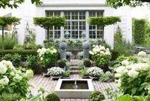 Garden and co.