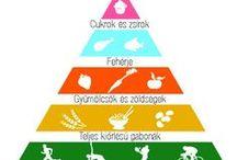 Health / Egészség