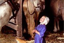 Amish en anderen