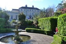 The Maryborough Hotel & Spa / Nestled in the leafy suburbs of Cork, the Maryborough Hotel is one of the finest Cork Hotels Ireland has to offer; combining the charm and grandeur of a country residence with the luxury of an internationally acclaimed Cork hotel. / by Maryborough Hotel & Spa