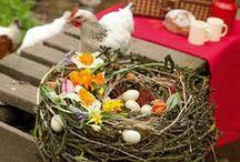 Die schönsten Osterideen zum Selbermachen / Überraschen Sie Freunde und Familie zum Osterfest mit bunten Dekorationen aus Ihrer eigenen Kreativwerkstatt! BLOOM's präsentiet Ihnen blumige Osterdeko, die Sie zu Hause im Handumdrehen nachmachen können!