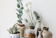 ◇ Nature infused interiors| plants / Flowers and plants for my home.