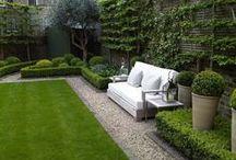garden/kert