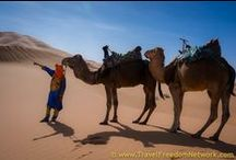MOROCCO / Things to do in Morocco. Fascinating photography of our time in Morocco.