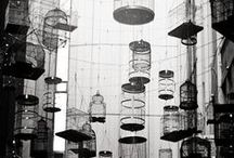 Bird cage / by Carole Bat