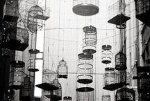 Bird cage / by Carole Bat