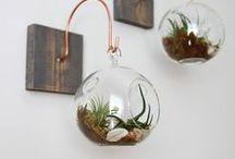 ideas for the House / evasanchezdesign.blogspot.dk