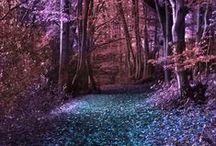 Enchanted *-*