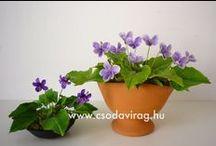 4. Clay flower - Agyagvirág / Clay flower - Variations on a theme ... , Agyagvirág - Variációk egy témára...