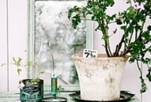 Vignettes / A love of all things french, shabby and vintage with a touch of casual elegance.