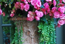 Urns / A love of all things french, shabby and vintage with a touch of casual elegance.