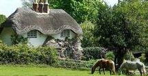 Stunning Houses & Gardens