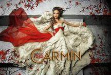 Colección: Carmin
